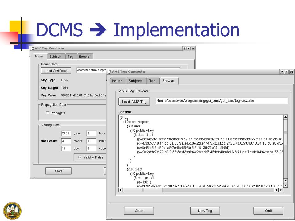 DCMS  Implementation