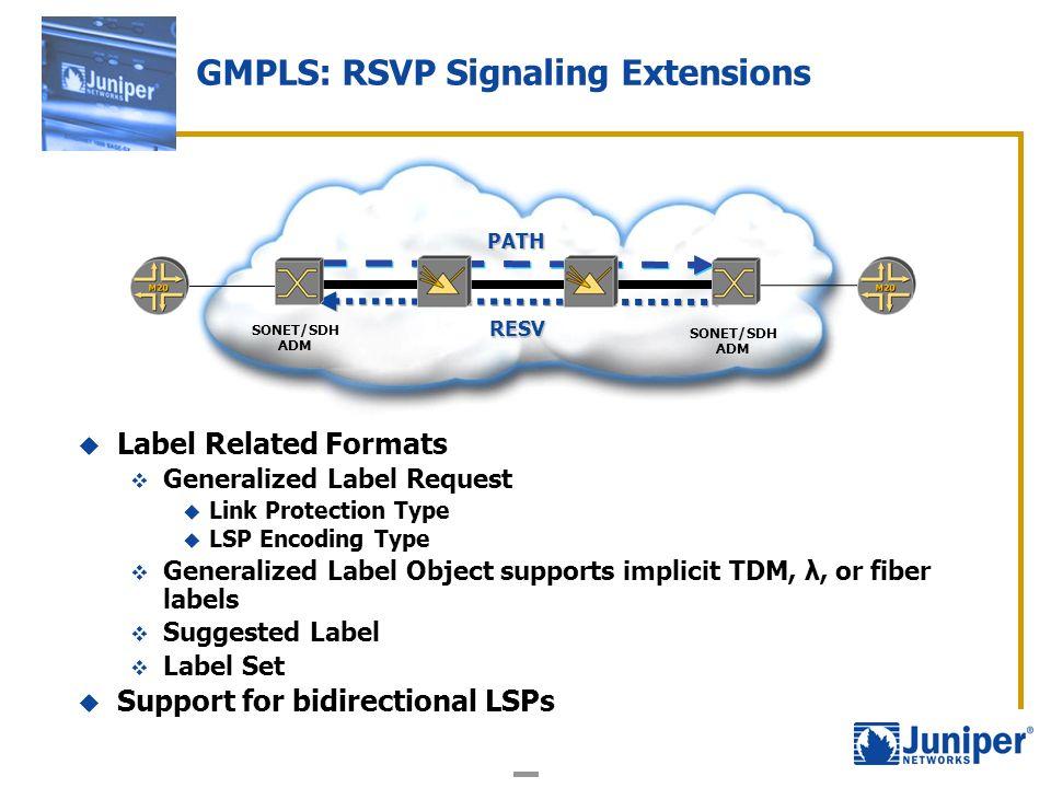 GMPLS: RSVP Signaling Extensions