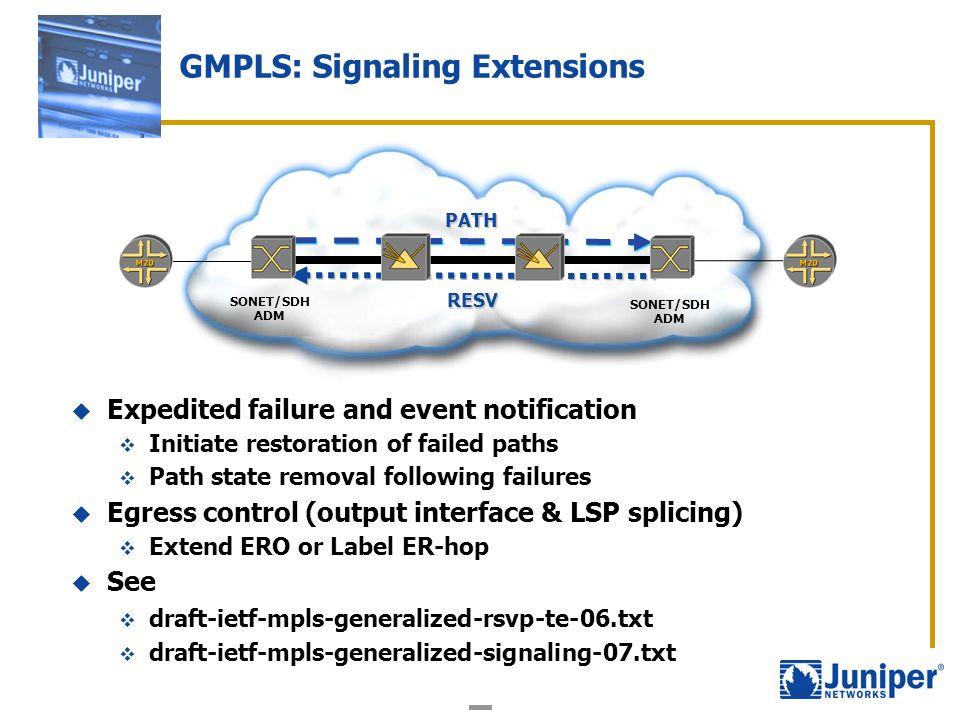 GMPLS: Signaling Extensions
