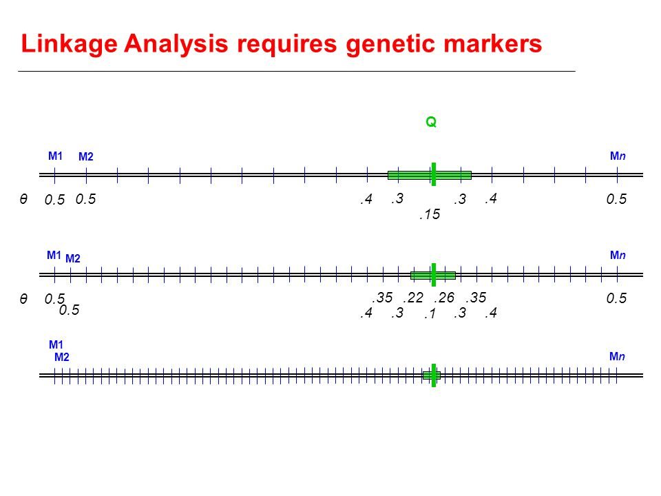 Linkage Analysis requires genetic markers