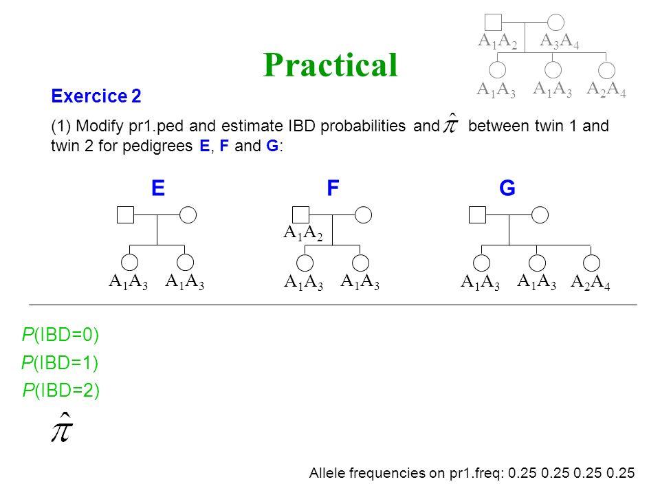 Practical E F G A1A2 A3A4 A1A3 A1A3 A2A4 Exercice 2 A1A2 A1A3 A1A3