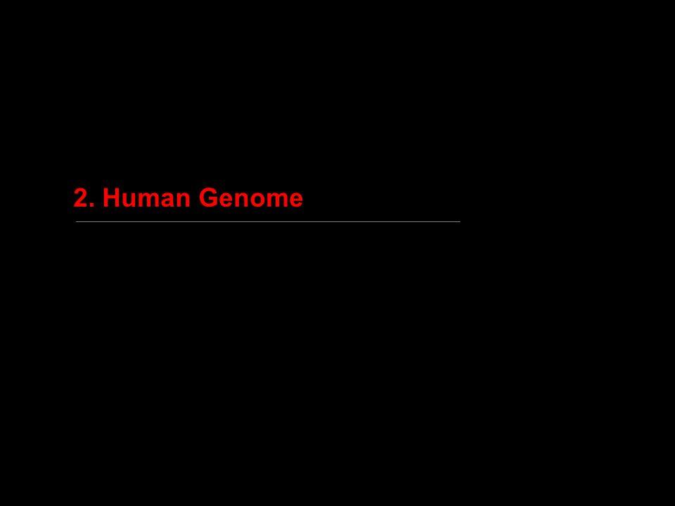 2. Human Genome