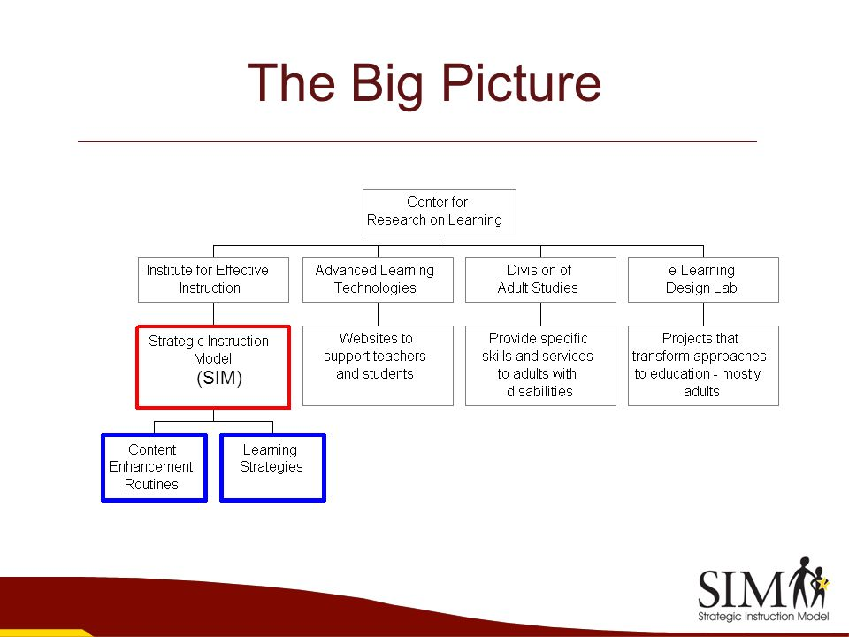 The Big Picture (SIM)