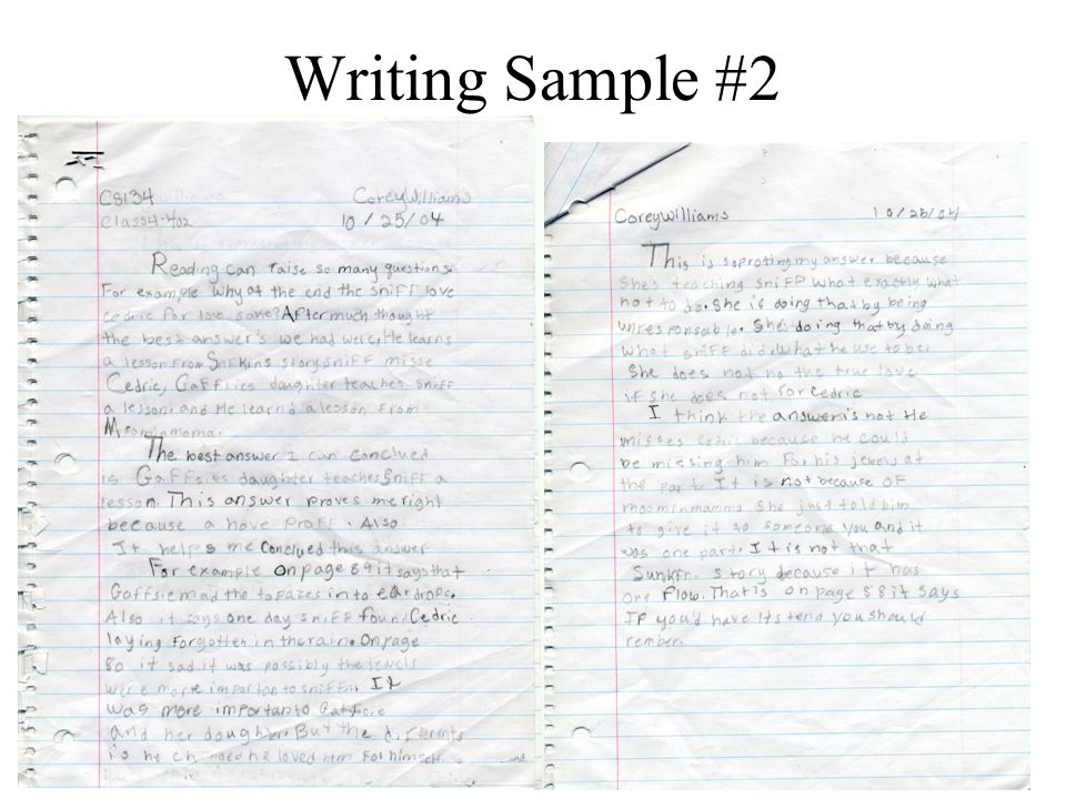 Writing Sample #2