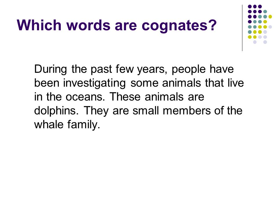 Which words are cognates
