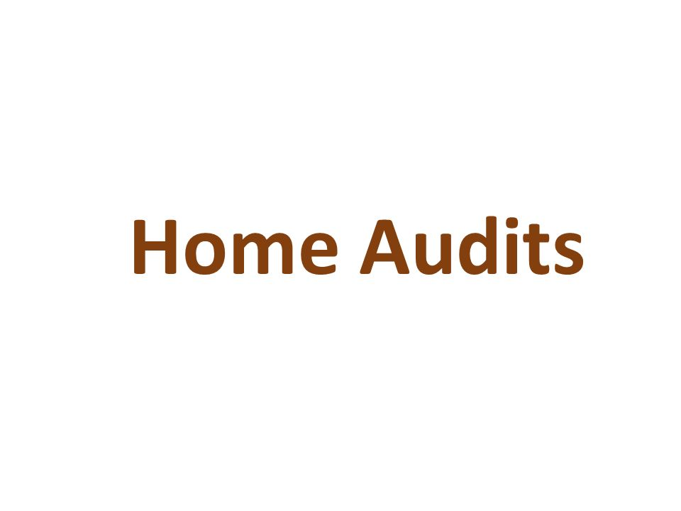 Home Audits This is the detail that carers need to know. What they will have to do. Note to presenters: