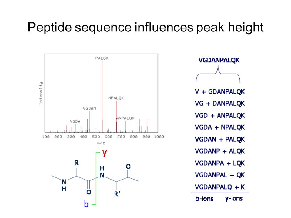 Peptide sequence influences peak height