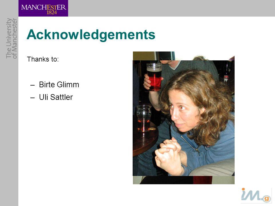 Acknowledgements Thanks to: Birte Glimm Uli Sattler