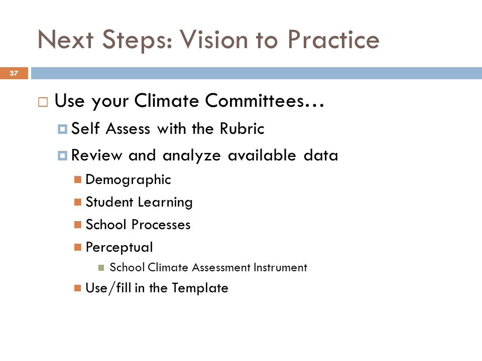 Next Steps: Vision to Practice