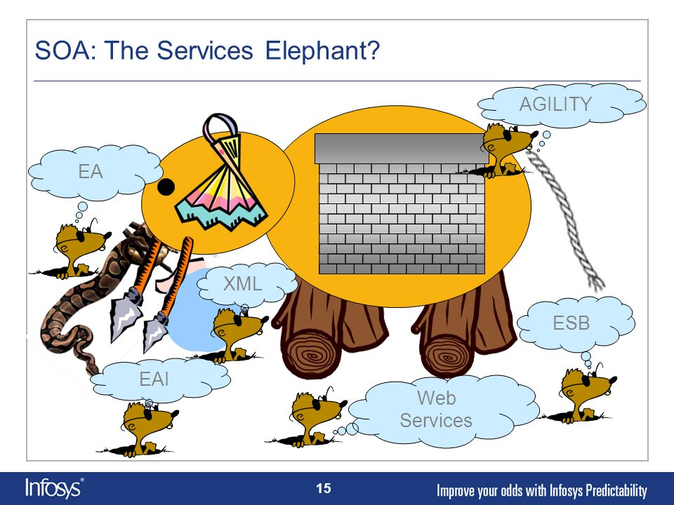 SOA: The Services Elephant