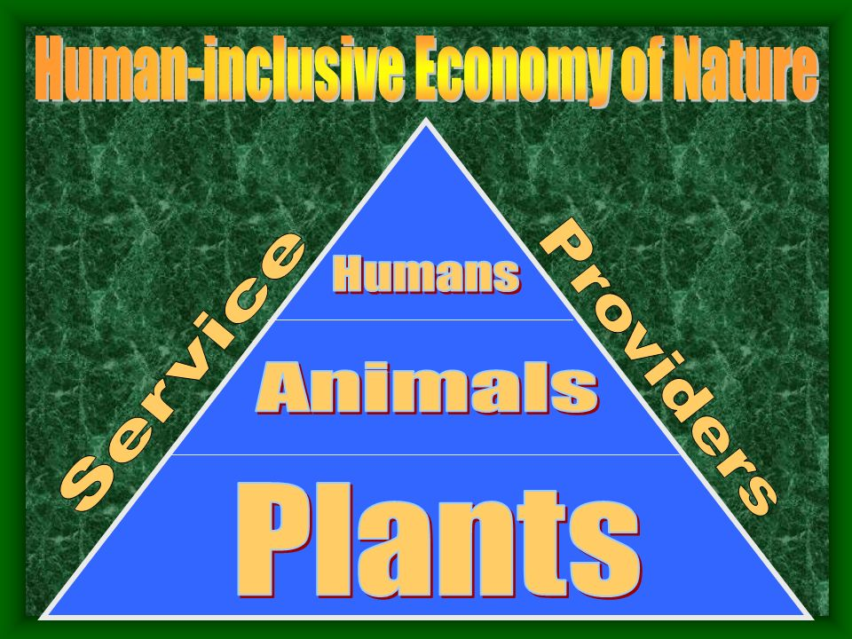 Human-inclusive Economy of Nature