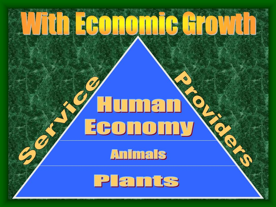 With Economic Growth Human Economy Service Providers Animals Plants