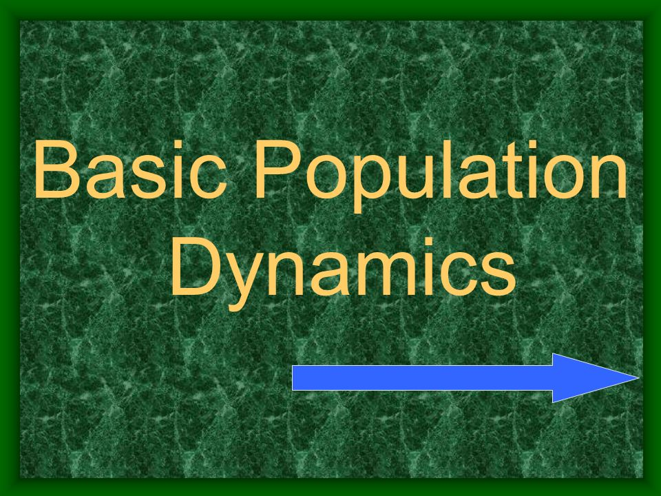 Basic Population Dynamics