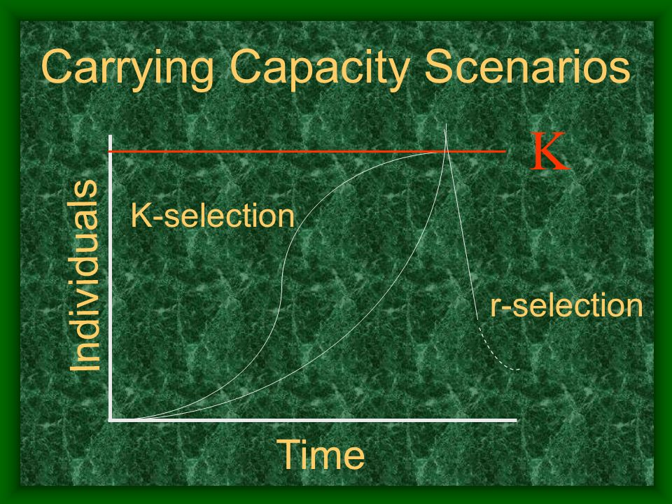 Carrying Capacity Scenarios