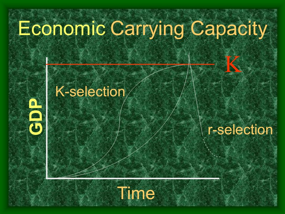 Economic Carrying Capacity