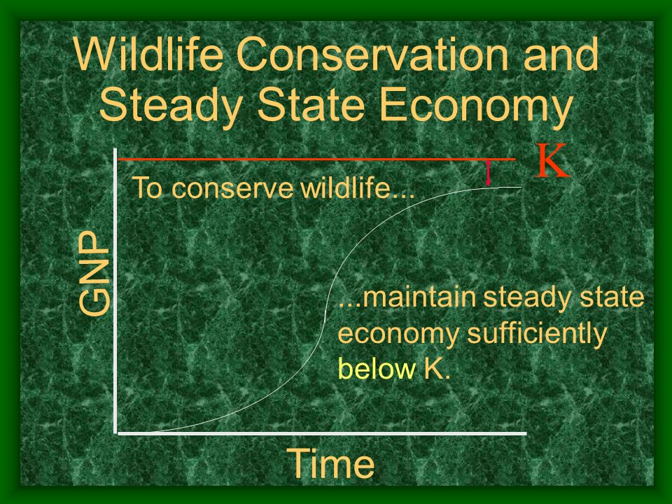 Wildlife Conservation and