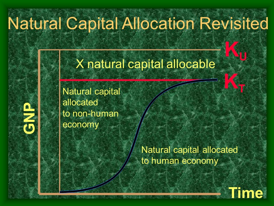 KU KT Natural Capital Allocation Revisited GNP Time