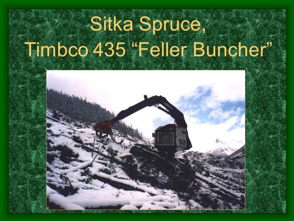Timbco 435 Feller Buncher