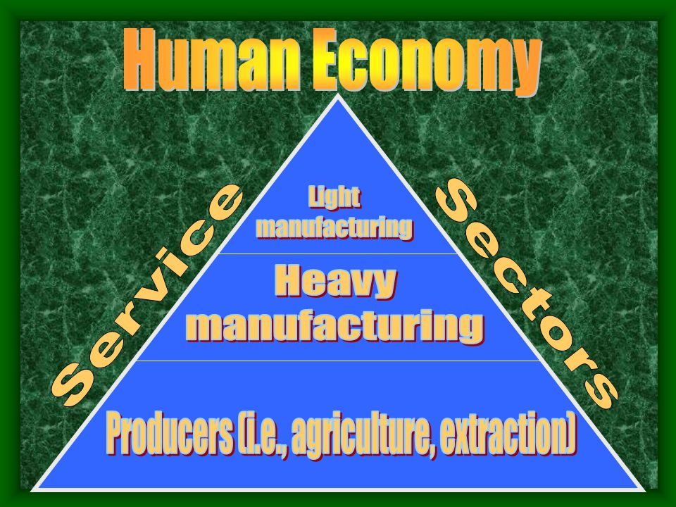 Producers (i.e., agriculture, extraction)