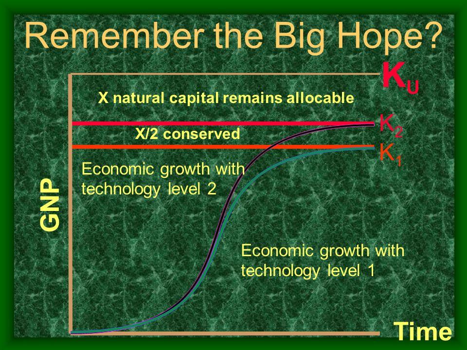 Remember the Big Hope KU GNP Time K2 K1