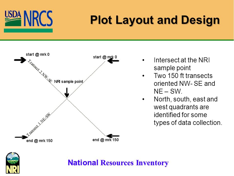 Plot Layout and Design Intersect at the NRI sample point