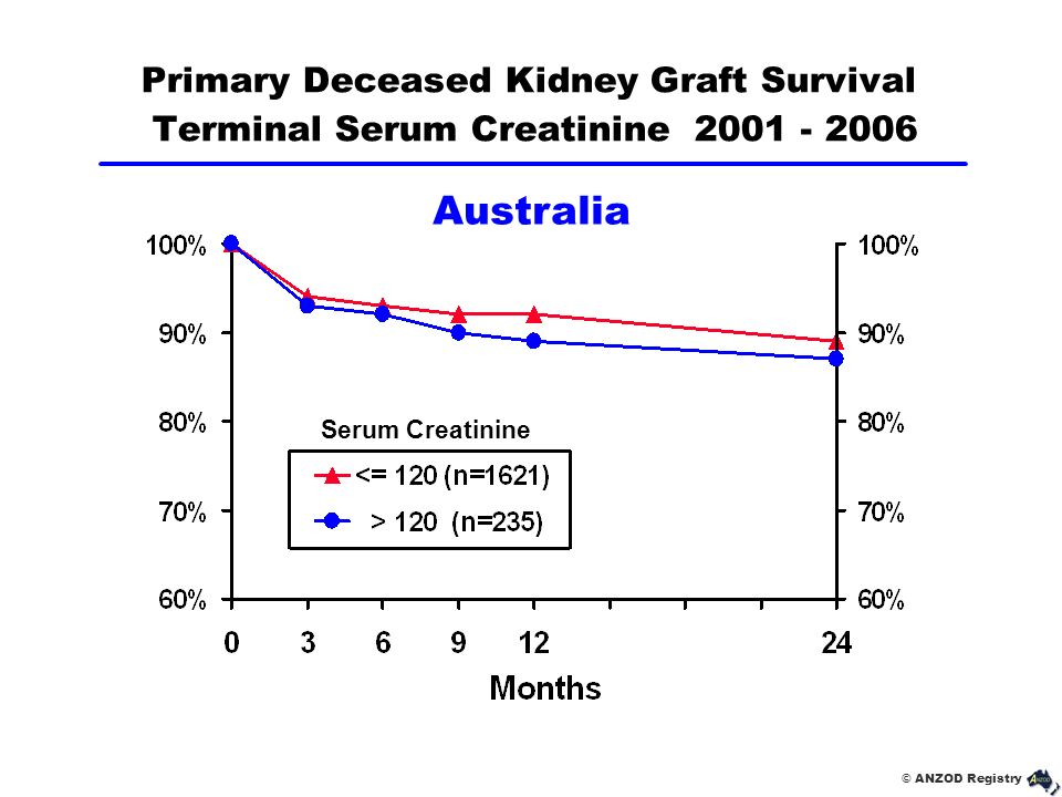 Primary Deceased Kidney Graft Survival Terminal Serum Creatinine 2001 - 2006