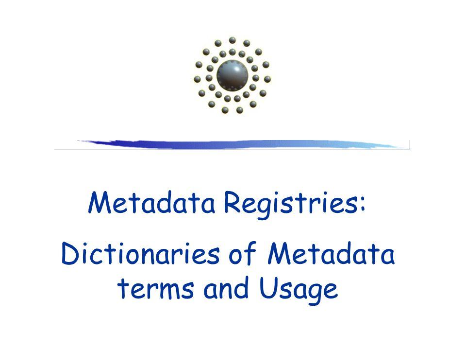 Dictionaries of Metadata terms and Usage