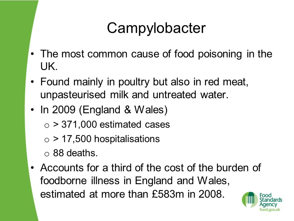 Campylobacter The most common cause of food poisoning in the UK.
