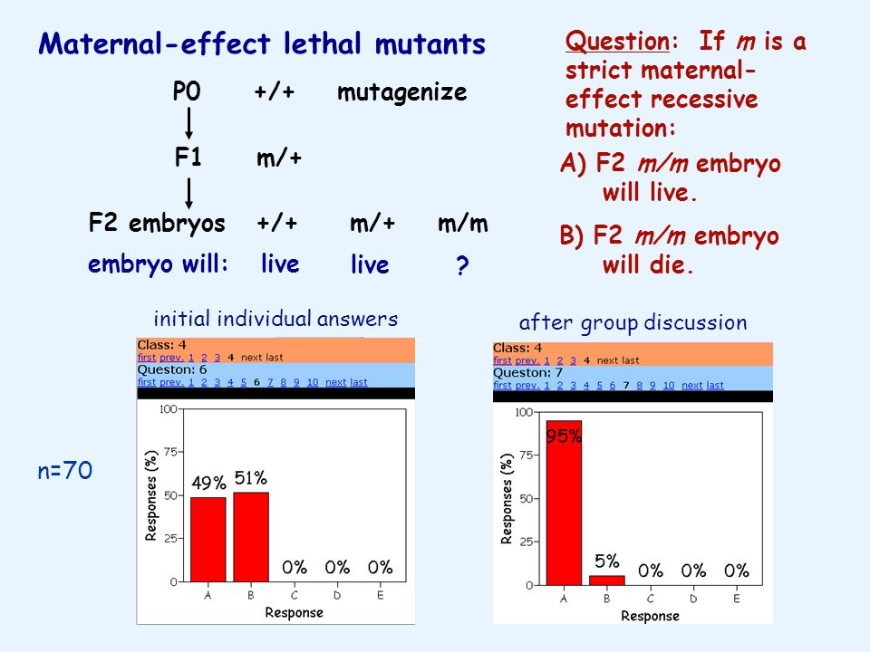 Maternal-effect lethal mutants
