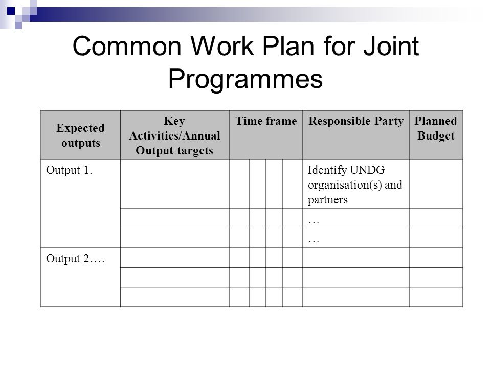 Common Work Plan for Joint Programmes