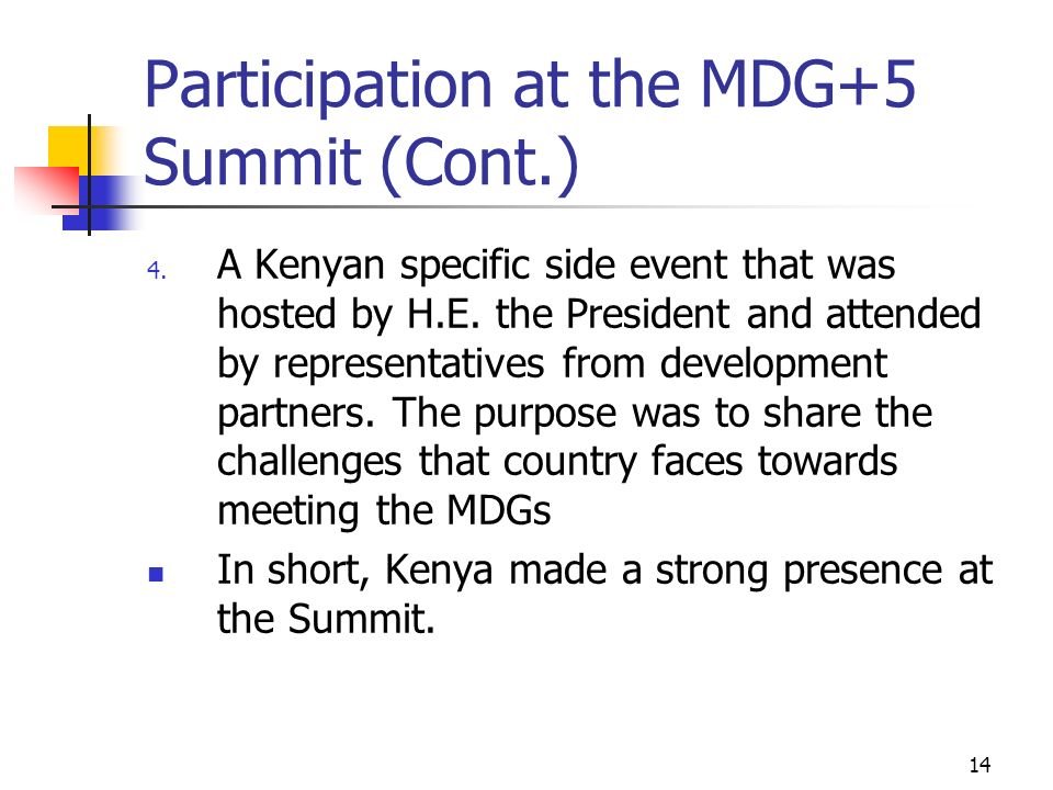 Participation at the MDG+5 Summit (Cont.)