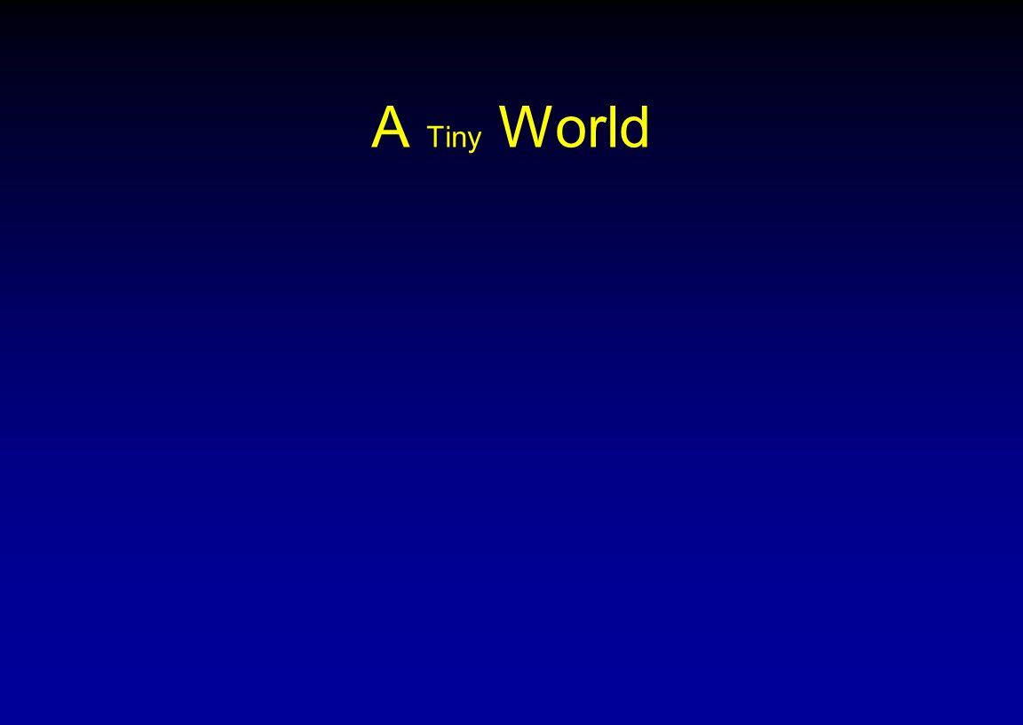 A Tiny World NSF ADVANCE