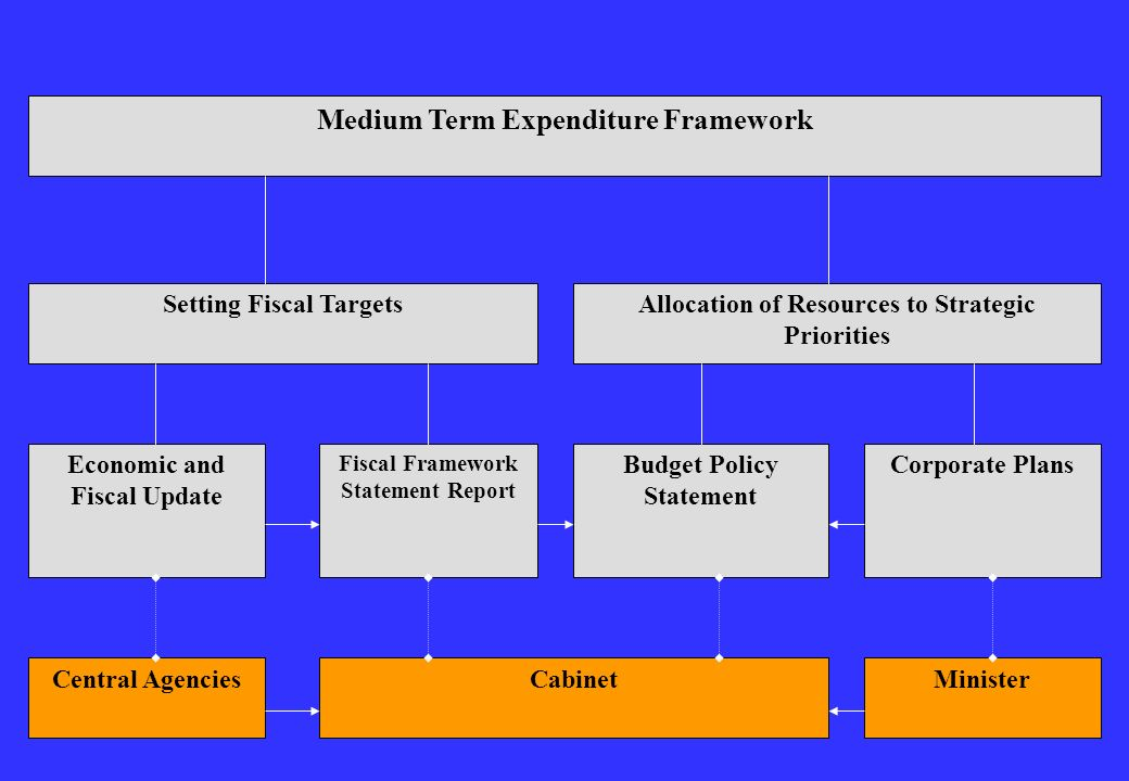 Medium Term Expenditure Framework