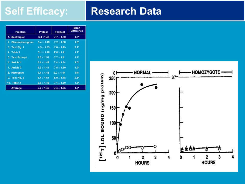 Self Efficacy: Research Data