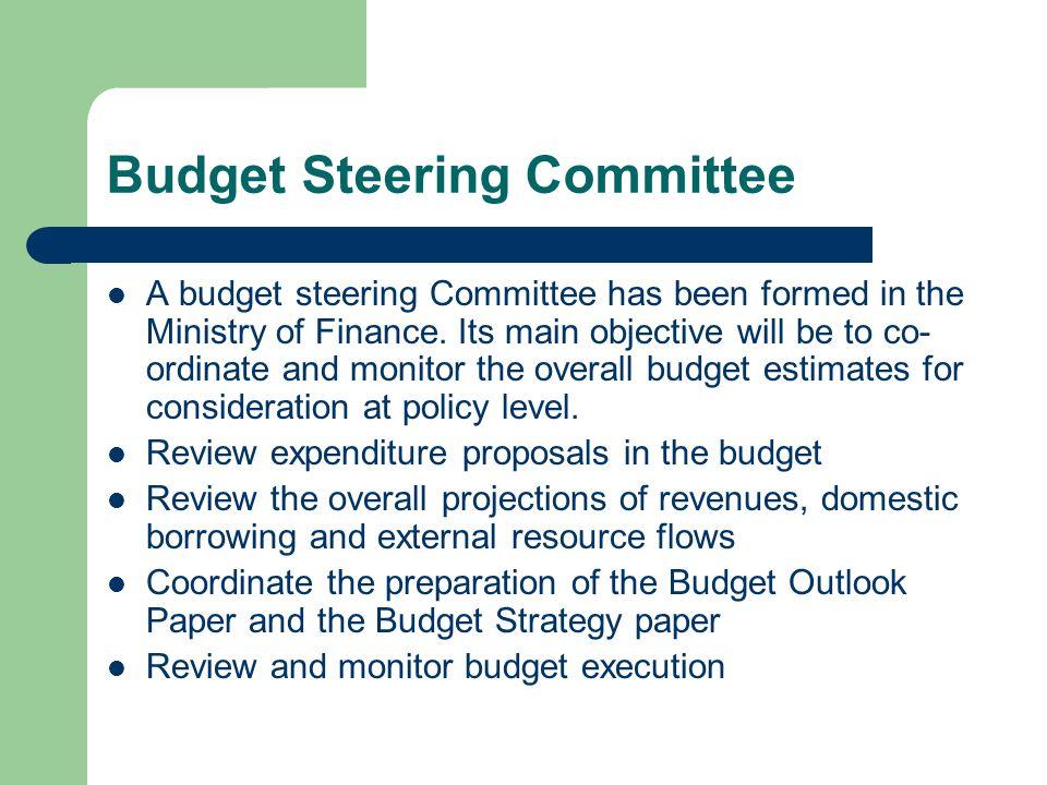 Budget Steering Committee