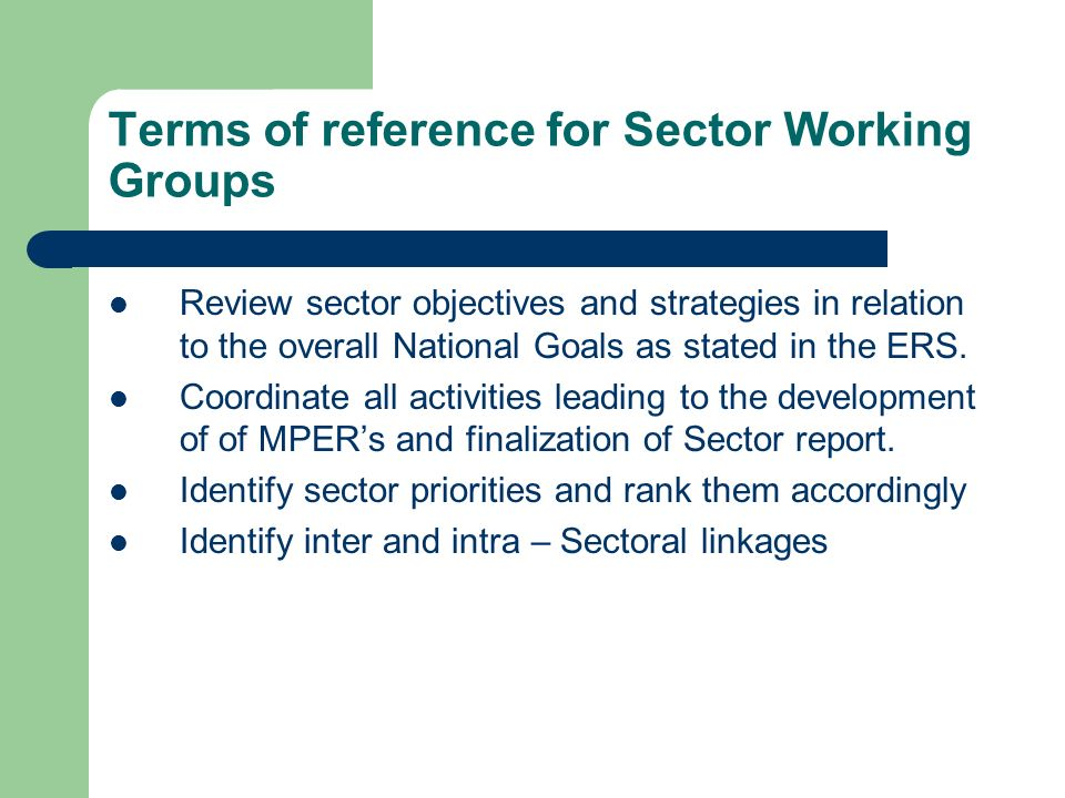 Terms of reference for Sector Working Groups