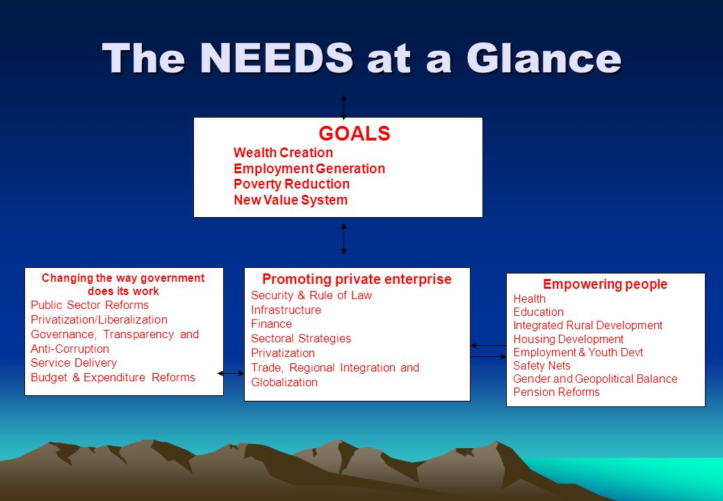 The NEEDS at a Glance GOALS Promoting private enterprise