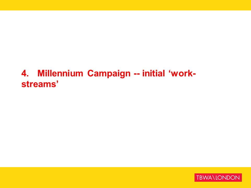 4. Millennium Campaign -- initial 'work-streams'