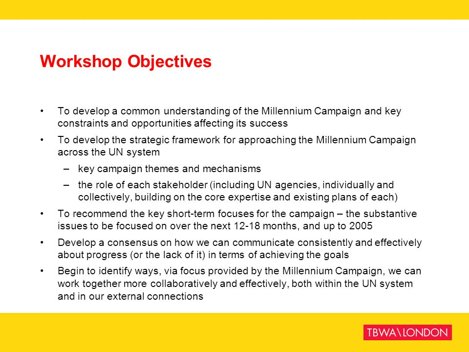 Workshop Objectives To develop a common understanding of the Millennium Campaign and key constraints and opportunities affecting its success.