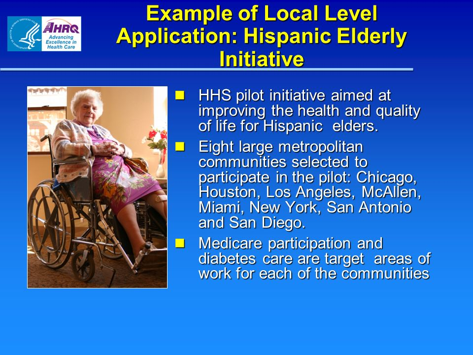 Example of Local Level Application: Hispanic Elderly Initiative