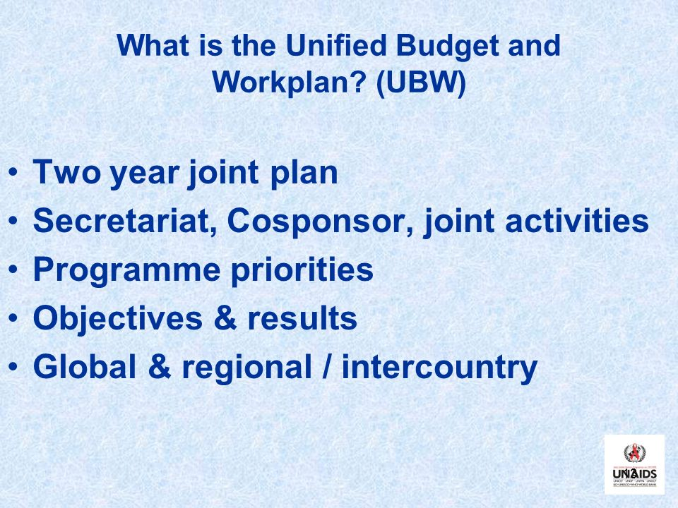 What is the Unified Budget and Workplan (UBW)