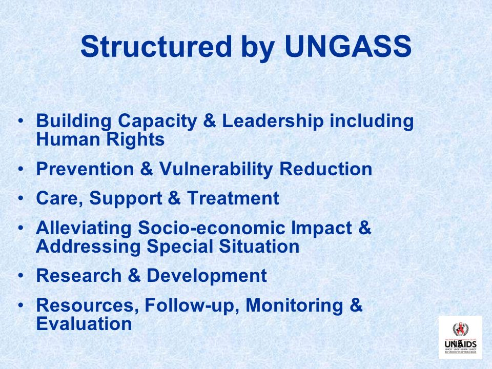 Structured by UNGASS Building Capacity & Leadership including Human Rights. Prevention & Vulnerability Reduction.