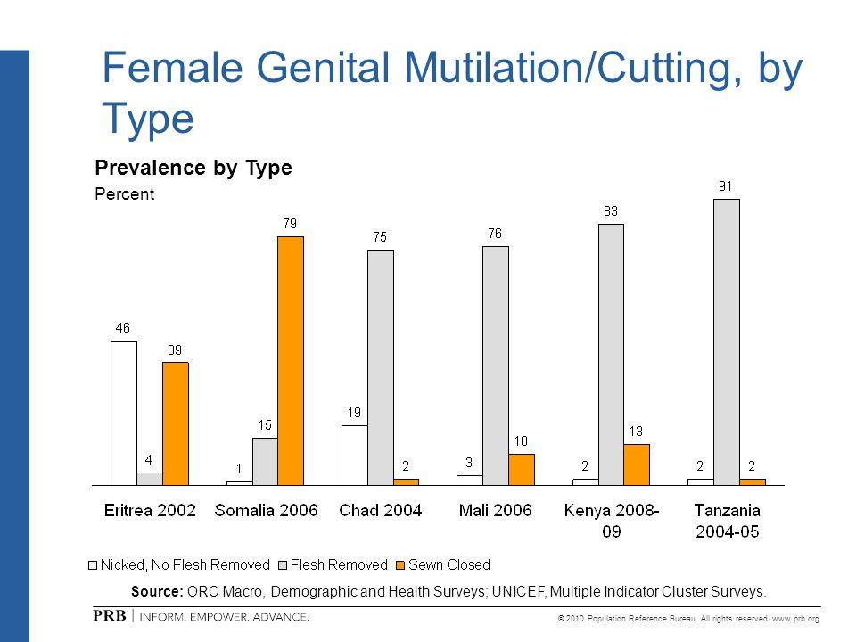 Female Genital Mutilation/Cutting, by Type