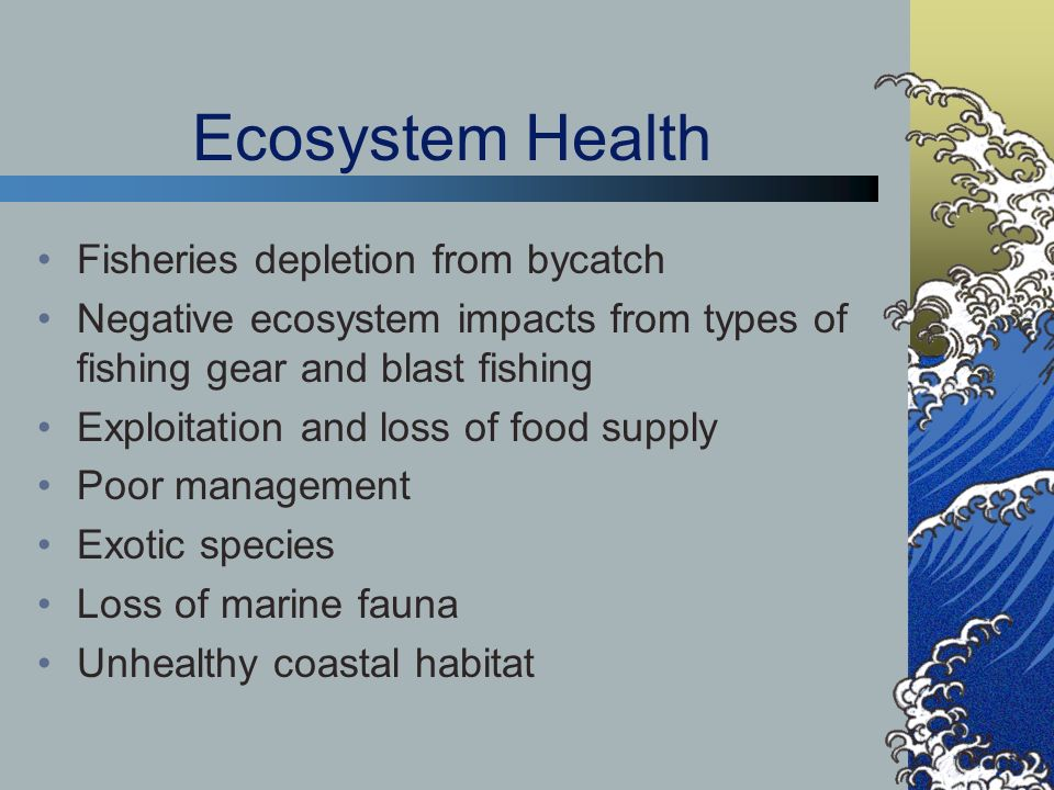 Ecosystem Health Fisheries depletion from bycatch