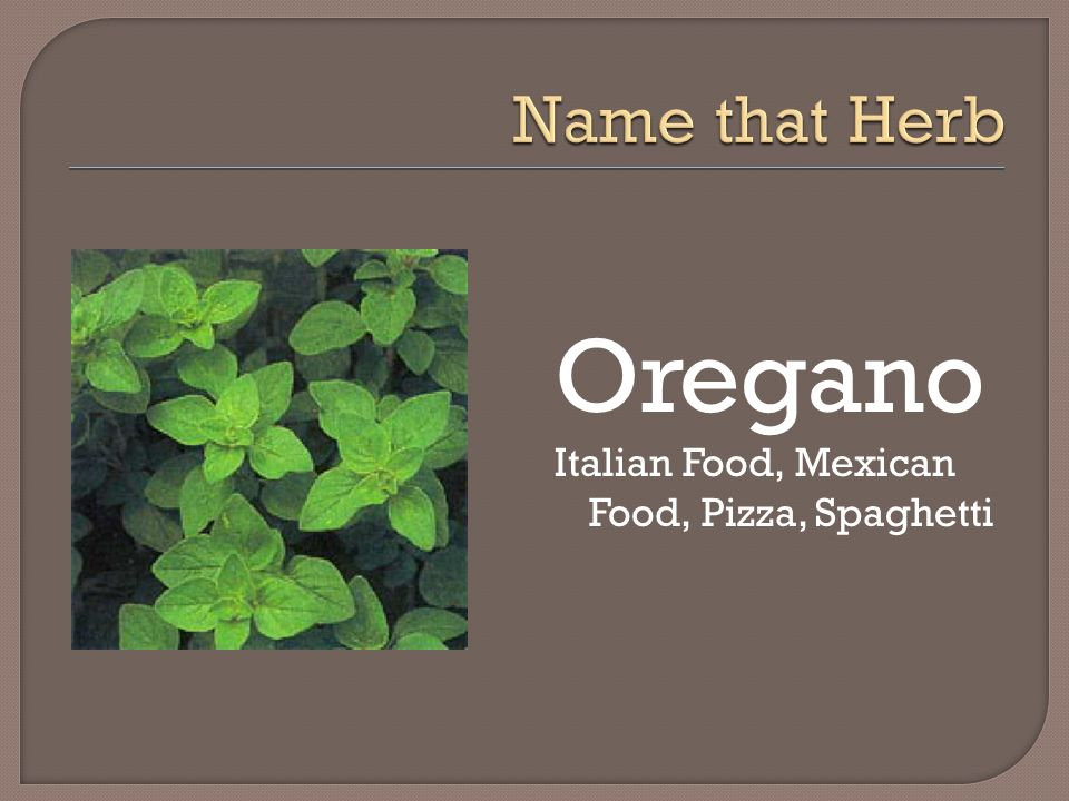 Name that Herb Oregano Italian Food, Mexican Food, Pizza, Spaghetti