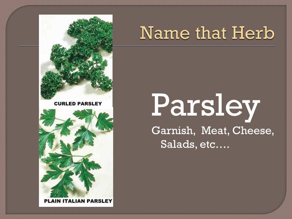Name that Herb Parsley Garnish, Meat, Cheese, Salads, etc….