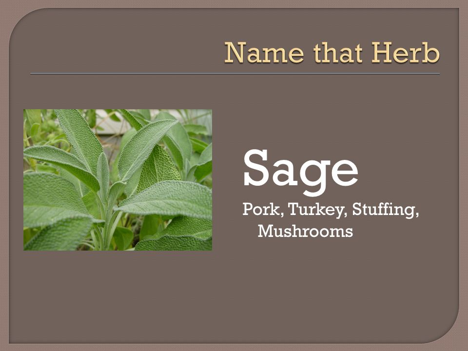 Name that Herb Sage Pork, Turkey, Stuffing, Mushrooms