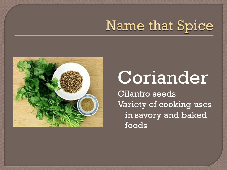 Coriander Name that Spice Cilantro seeds