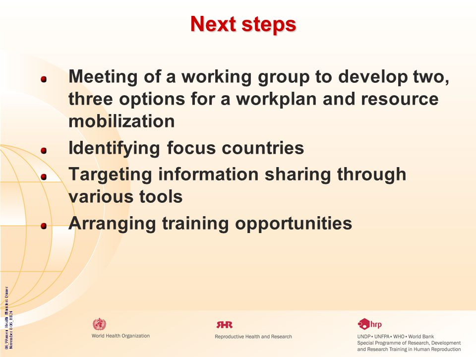 Next steps Meeting of a working group to develop two, three options for a workplan and resource mobilization.