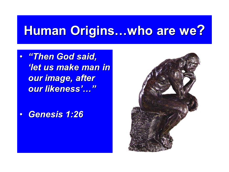 Human Origins…who are we